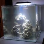 Sebastian´s Nano Reef